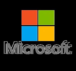 Microsoft от компании Программ инжиниринг